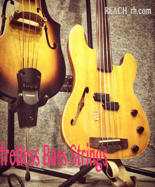 Fretless Bass Strings-2-2