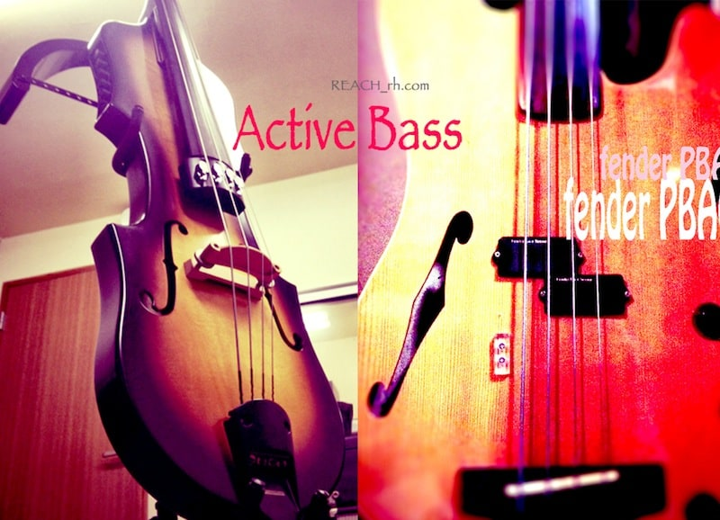aria β、Fender PBAC-100FL (Active Bass)