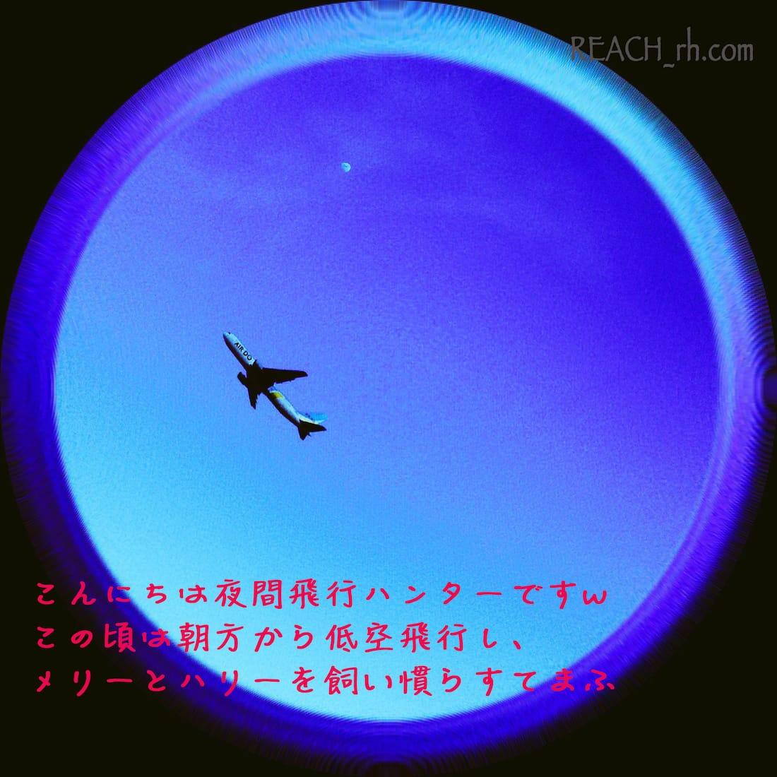 夜間飛行ハンターのメリハリ-min