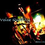 ボーカルの声質についての現実