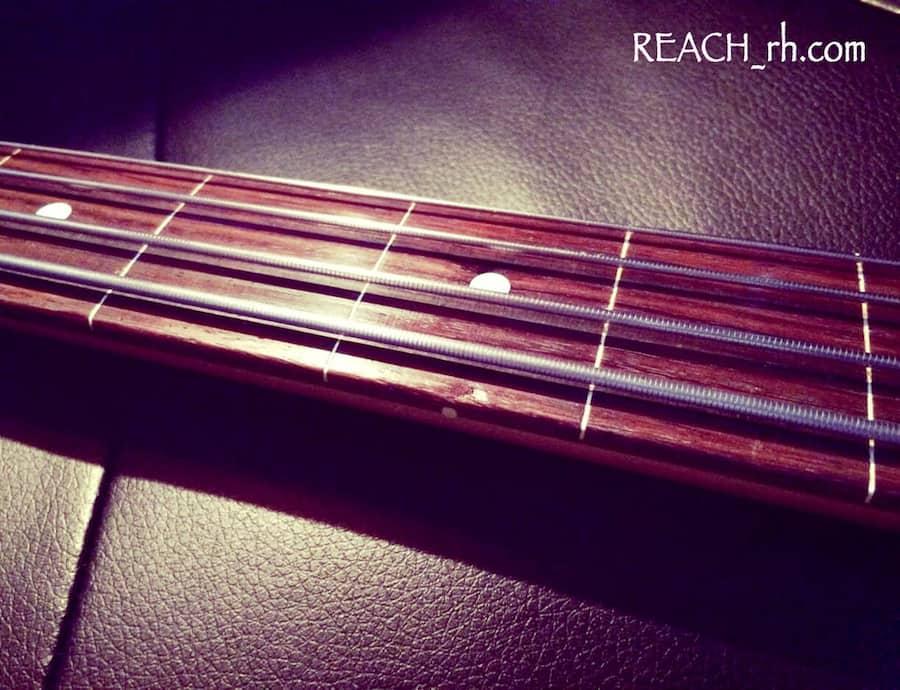 Fender Jazz Bass FL 指板