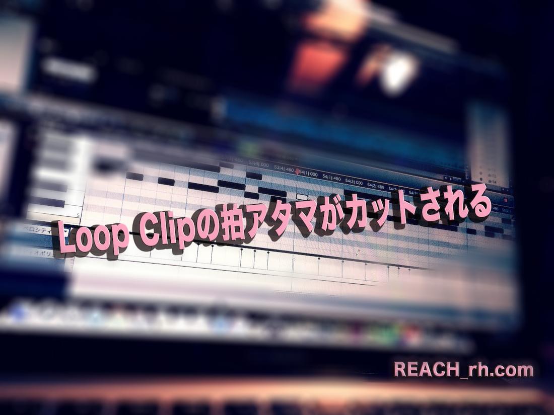 Loop-Clip-