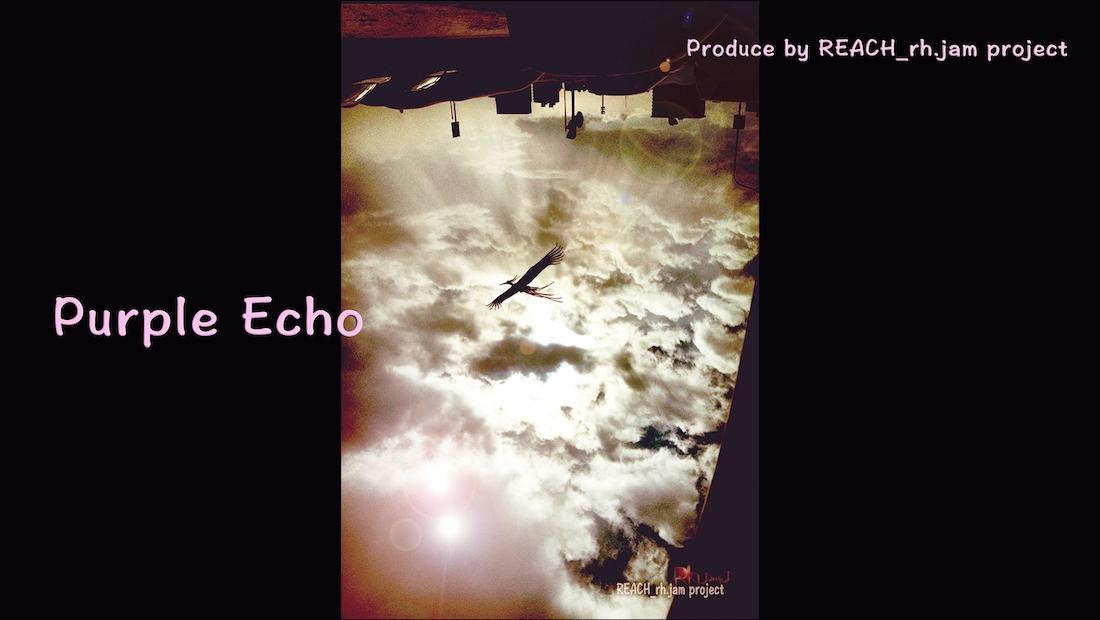 purple echo