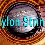 ナイロン弦の弾き心地や音の違いって?ガットギターどう?
