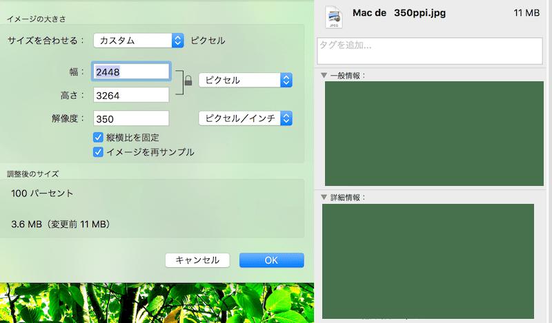 Mac350-info_