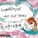 五感の互換性について