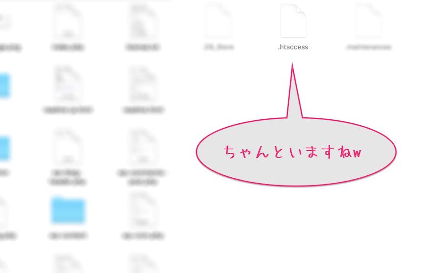 隠しファイル表示_