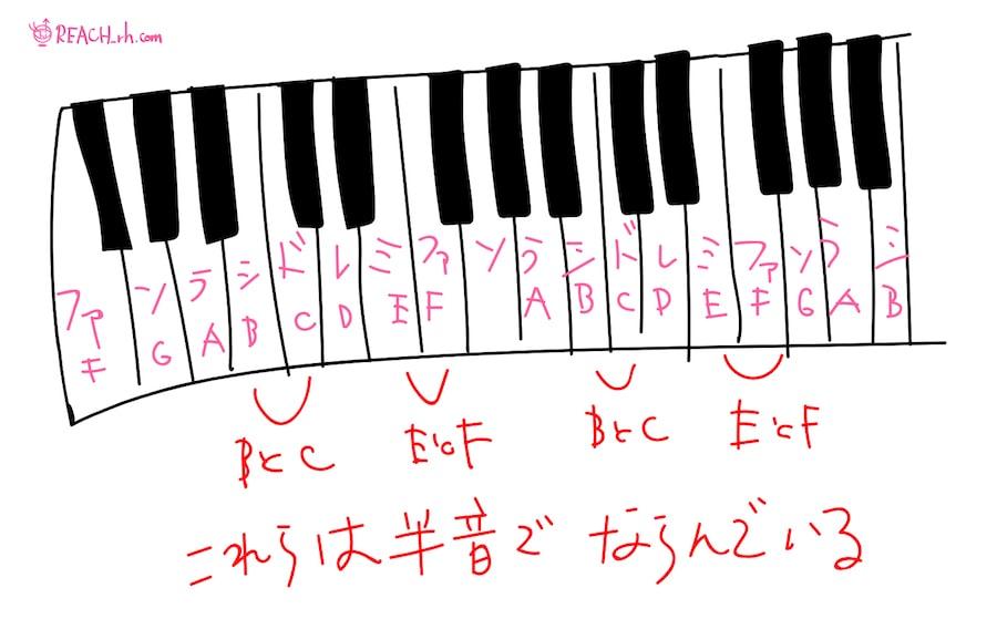 EとF、BとCは半音