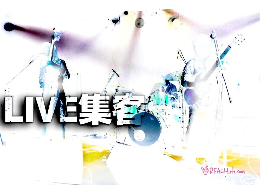 LIVE集客w